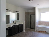 Raleigh IV Second Master Bath